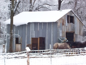 Our barn in a snow.