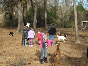 Kids on the Farm