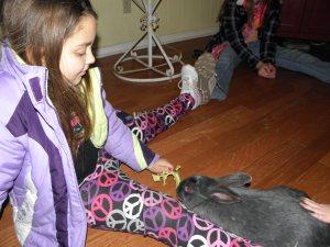 Presley was feeding the rabbit some celery.
