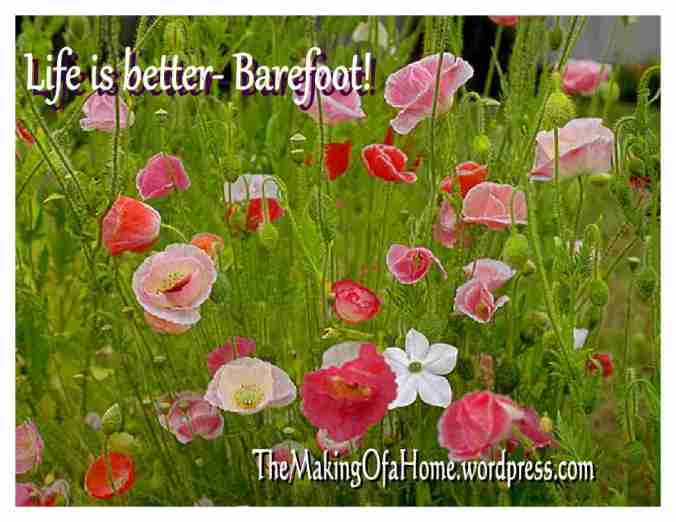 life is better barefoot pic