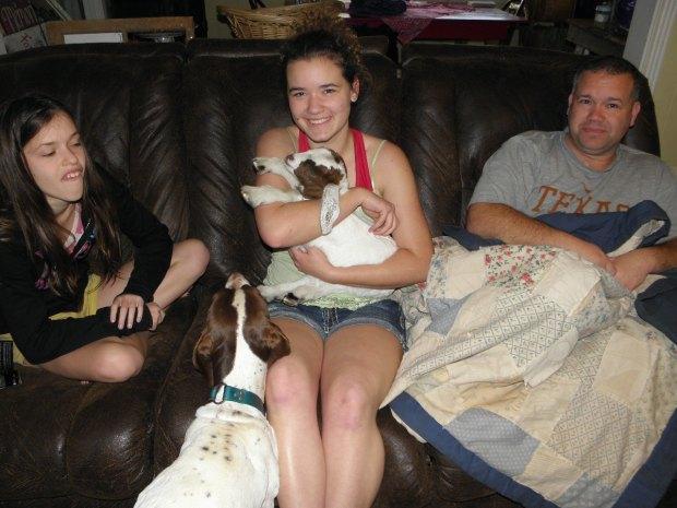 Savannah and Boer Goat Baby