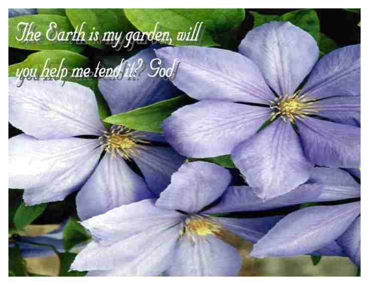 God's Garden (2)