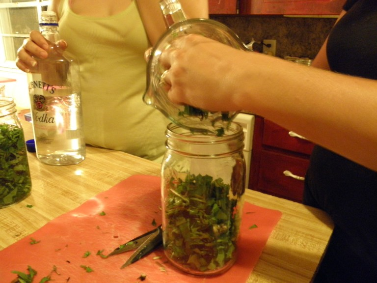 Creating an herbal tincture
