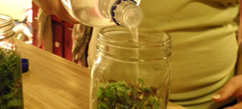 Herbal Tinctures- What Are They & How To MakeOne