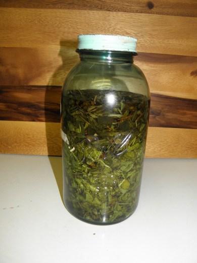 herbal tincture