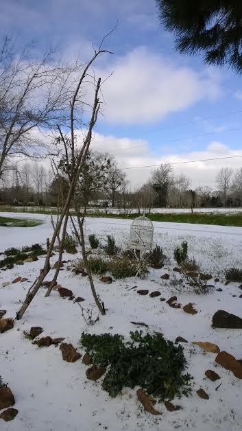 garden trellis in the ice