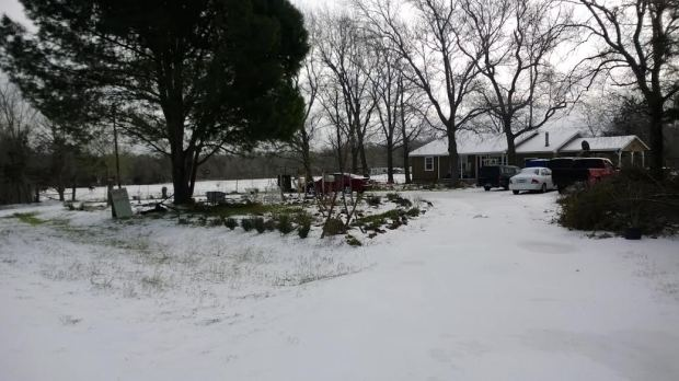 herb farm under ice