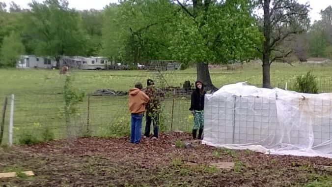 family covering peach trees