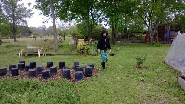sierra in the garden covering squash