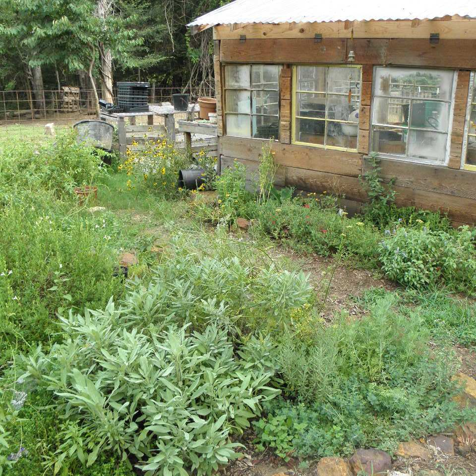 an-herb-garden-edged-in-red-rock-with-a-green-house-made-from-recycled-materials-such-a-peaceful-garden