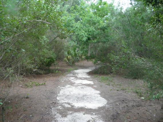Round island, two paths, florida