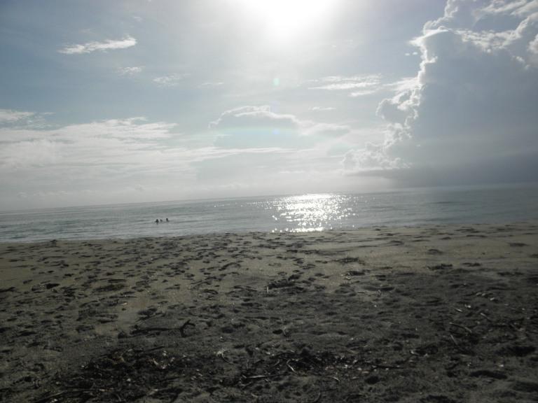 Bathtub Reef Park, Florida