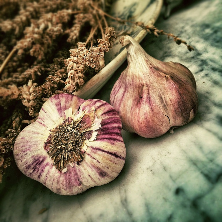 Some-varieties-of-garlic-have-beautiful-purple-stripes-like-these-pictures