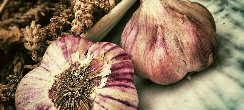 Growing Garlic- 5 Reasons Why YouShould
